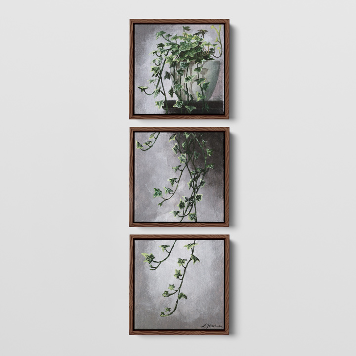 a framed three piece painting of an ivy hanging on a wall