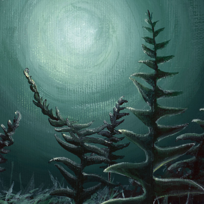 green painting of ferns and fungi in the moonlight